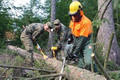Befallene Bäume erkennen, fällen, entästen, entrinden: Das sind die wesentlichen Arbeitsschritte, bei denen die Soldaten aus Marienberg und Bad Frankenhausen die Forstarbeiter unterstützen sollen.