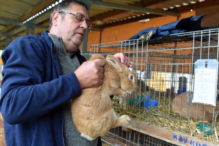 Kaninchenzüchter mit Leistungsschau zufrieden