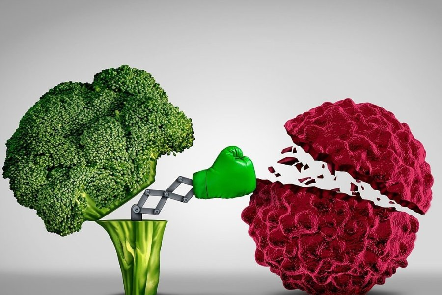 Mit gesundem Essen gegen die Krebszellen.