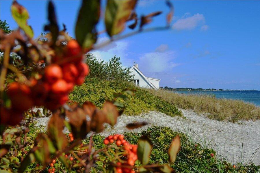 Viel Platz für Spaziergänge an der Ostsee: der Saksild Strand in Odder.