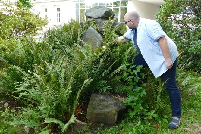 Obwohl das Denkmal zugewachsen ist, erkennt Carsten Beier noch immer den Stein, auf dem sich früher eine Inschrift befand.