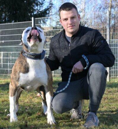 """Robert Gräfe absolviert im Tierheim """"Waldfrieden"""" ein Freiwilliges Ökologisches Jahr. Er ist hauptsächlich bei den Hunden eingesetzt und hat dabei auch mit Molosser-Mix-Rüde Ede zu tun."""