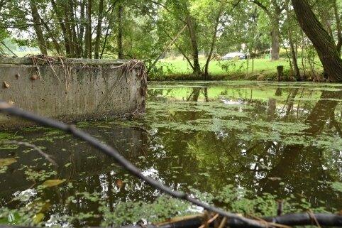 Der Löschwasserteich in Heiersdorf ist undicht und verschlammt. Im Brandfall könnte es dort mit dem Löschwasser Probleme geben.