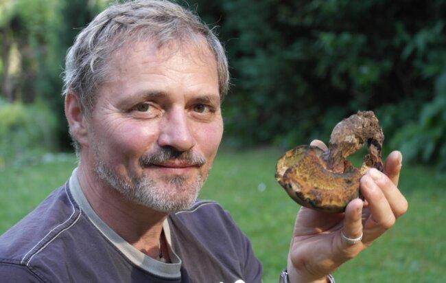 Pilzberater Michael Möbius zeigt einen Flockenstieligen Hexenröhrling, der als Speisepilz unter Kennern begehrt ist.