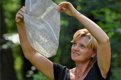 Geht Doreen Werner auf Mückenjagd, wie hier in einem Auwald in Brandenburg, ist der Kescher ihr wichtigstes Utensil.