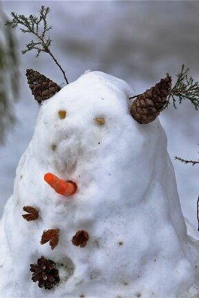 """Gesichter, frech wie Oskar! Knallrote Augen, megalange Nasen, Kopfbedeckungen, mit denen man sich auf jeder Klamauk-Party sehen lassen könnte: So haben die Mädchen und Jungen der Region am Montag den """"Welttag des Schneemanns 2021"""" begangen. Den gibt es tatsächlich. Und dass er ausgerechnet am 18. Januar stattfindet, hat mit den Ziffern 1 und 8 zu tun. Die 8 steht für die Form des Schneemanns, die 1 symbolisiert einen Stock oder einen Besen. Unser Fotoreporter Andreas Kretschel hat einige der Schönheiten fotografiert, die von den Kindern in Meerane, Gersdorf, Reinholdshain, Oberlungwitz, Niederlungwitz und Hohenstein-Ernstthal gebaut wurden. Und ja, Sie haben richtig hingeschaut: Ganz links oben steht eine richtige Schneefrau. Bis es hier aber zu einer Gleichberechtigung kommt, wird es wohl noch etwas dauern.erki"""