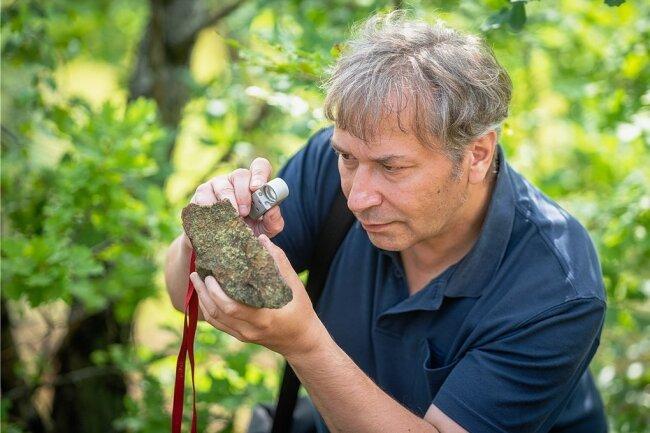 """Die Rostrote Kleinsporflechte ist so winzig, dass Marko Olias vom Naturschutzinstitut Freiberg sie mit der Lupe suchen muss. Auf dem Freiberger Gneis in der Halde """"Junge Hohe Birke"""" leben rund 50 weitere Flechten-Arten."""