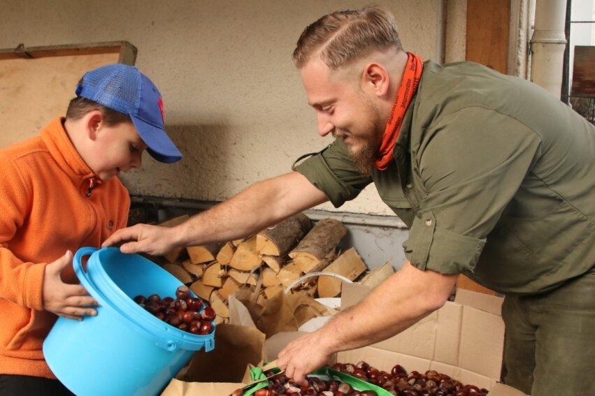 Der siebenjährige Terence aus Schreiersgrün liefert seine gesammelten Kastanien bei Jäger Eric Müller im Treuener Ortsteil Veitenhäuser ab.l