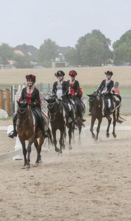 Viele Zuschauer verfolgten unter anderem am Samstagnachmittag das Quadrille, bei denen mehrere Reiter und Pferde kostümiert auftraten.