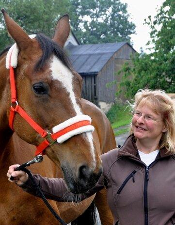 Mit der heute 26-jährigen Stute Dasy begann vor 20 Jahren die Geschichte des Reiterhofes von Nora Schrecker in Gospersgrün.