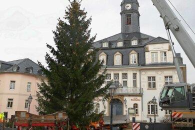 Der Schwarzenberger Weihnachtsbaum steht seit Montag vor dem Ratskeller.