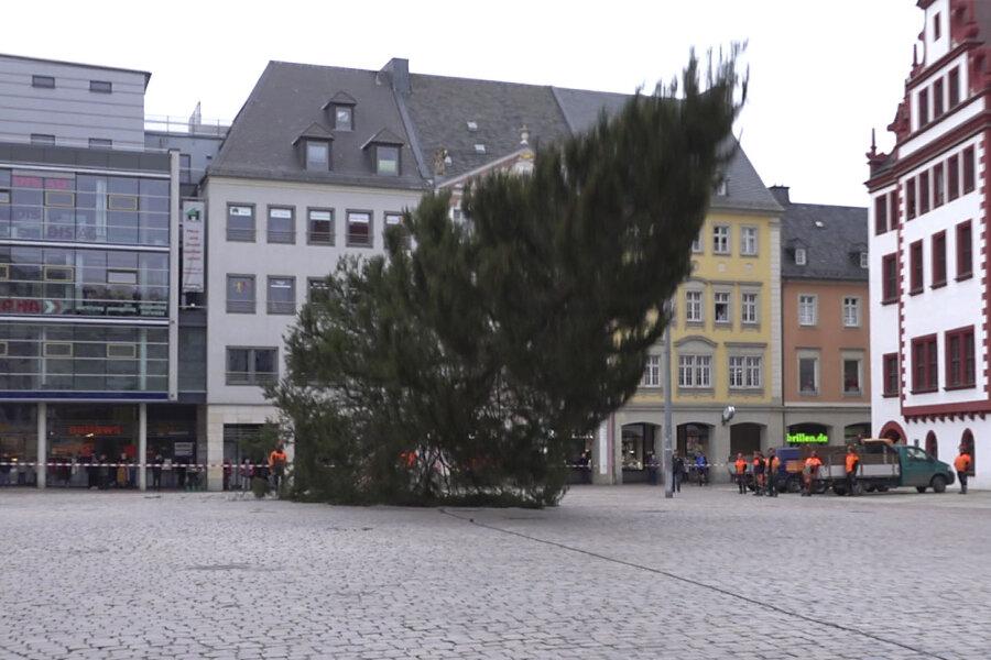 Chemnitzer Weihnachtsbaum fällt krachend zu Boden
