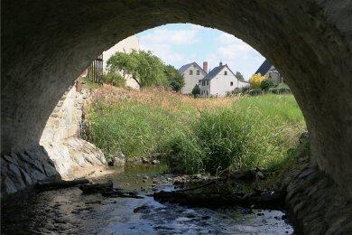 Die Wisenta in Mühltroff liegt bereits auf dem Trockenen. Der Fluss führt kaum noch Wasser.