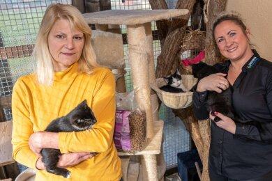 Tierheim-Chefin Karin Slogsnat (links) in der Katzenstation des Tierheimes Treuen. Der Betreiberverein kann dank einer 1500-Euro-Spende von Nancy Geigenmüller und der Stiftung Pro nature die Pläne zum Freilauf für die Tiere in Angriff nehmen.