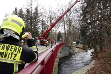 Der Baum wurde zur Sicherung an einen Kran gehängt und von der Feuerwehr zersägt.