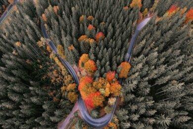 Platz 2: Ein herausragendes Bild ist Alexander Nix aus Lauter-Bernsbach gelungen. Zunächst ist da die trotz zunehmender Verbreitung von Drohnen immer noch ungewohnte Perspektive aus der Luft. Die sich durch den Wald schlängelnde Straße zwischen Grünhain und Elterlein wird gesäumt von vielen Nadelbäumen und einigen Laubbäumen, deren herbstliche Färbung herrliche Farbkontraste setzt.