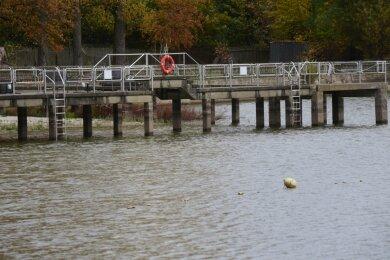 Der Große Teich im Vogelschutzgebiet in Limbach-Oberfrohna. Wo sonst Reiherenten und Lachmöwen ihr Revier und Platz zur Aufzucht ihres Nachwuchses haben, herrschen seit längerer Zeit schon Leere und Stille.