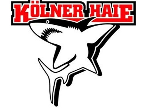 Die Kölner Haie nehmen Angreifer Zalewski unter Vertrag