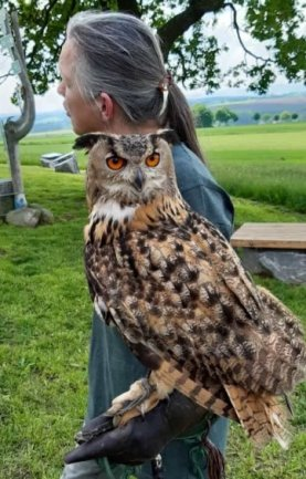 Heike Theresia Jäkel von der Wildvogelpflege Mittelsachsen aus Langenau stellte auf dem Ranis Tiere wie diesen Uhu vor.