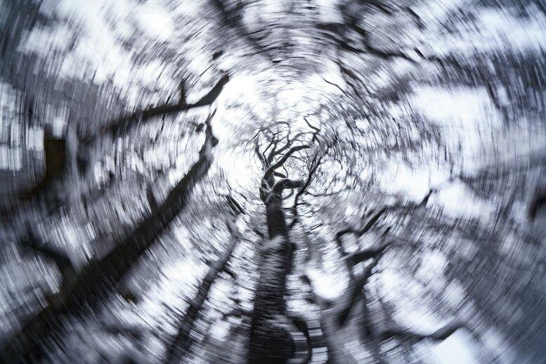 Schneebruch hält Retter im Vogtland in Atem