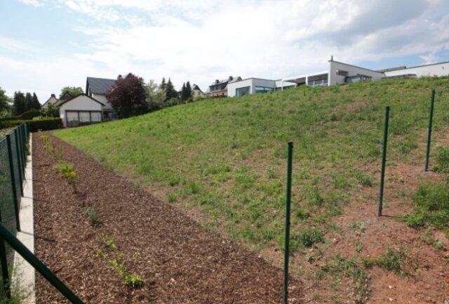 An diesem Hang in der Lichtensteiner Albert-Schweitzer Siedlung will ein Grundstücksbesitzer eine Photovoltaik-Anlage aufstellen lassen. Im Stadtrat stößt das auf Bedenken.
