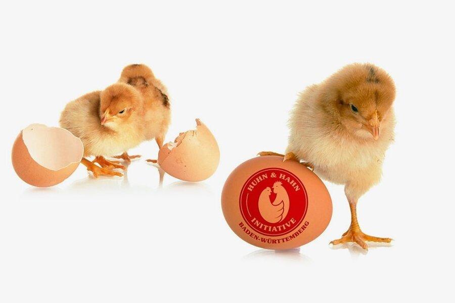 Wer Huhn sagt, muss auch Hahn sagen.