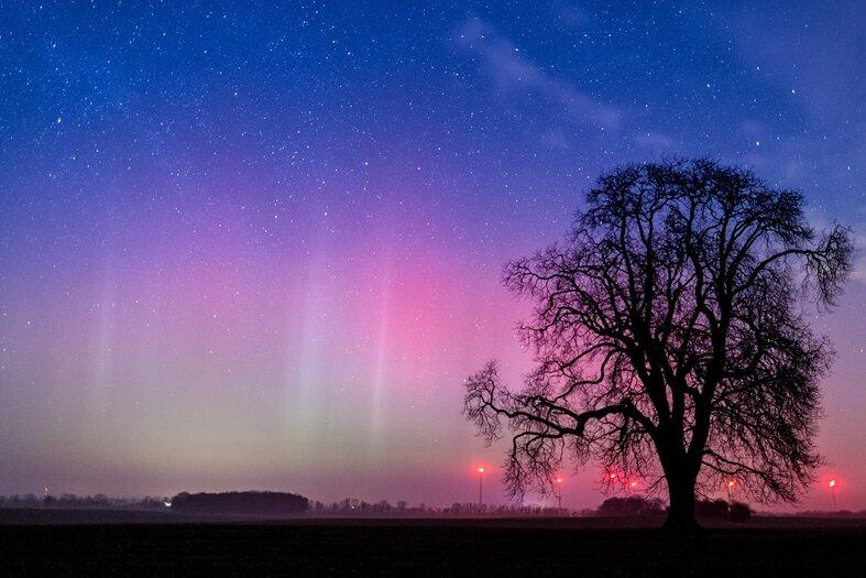 Ein Polarlicht leuchtet am Nachthimmel am Sonntag nahe Lietzen im Landkreis Märkisch-Oderland (Brandenburg). Dieses Nordlicht (Aurora borealis) wurden durch eine gigantische Wolke elektrisch geladener Teilchen eines Sonnensturms in der Erdatmosphäre erzeugt. Der farbliche Effekt wird hierbei durch die Digitalkamera bei einer Langzeitbelichtung von etwa 10 Sekunden noch verstärkt.