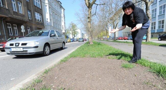 Es war einmal: Nicht nur Grit Agsten, die Chefin vom Café Südeck, vermisst die neugepflanzten Bäume an der Reichenhainer Straße.