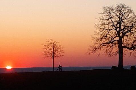 Das Vogtland ist reich an schönen Panoramen - und das zu jeder Tageszeit: Sonnenaufgang an der alten und der neuen Reuther Linde.