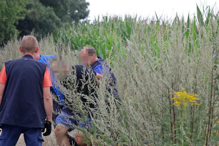 Die Festnahme des mutmaßlichen Autodiebes erfolgte in einem Maisfeld an der A 4.