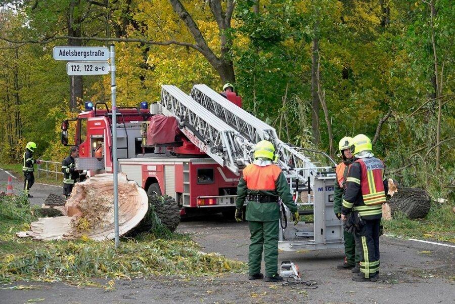 Rund 150 Mal rückte die Feuerwehr am Donnerstag aus, um Sturmschäden - wie hier an der Adelsbergstraße - in Chemnitz zu beseitigen.