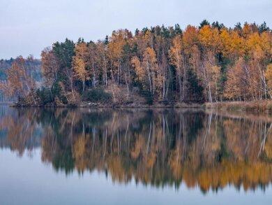Herbstlich gefärbte Bäume spiegeln sich im Abendlicht im Knappensee.