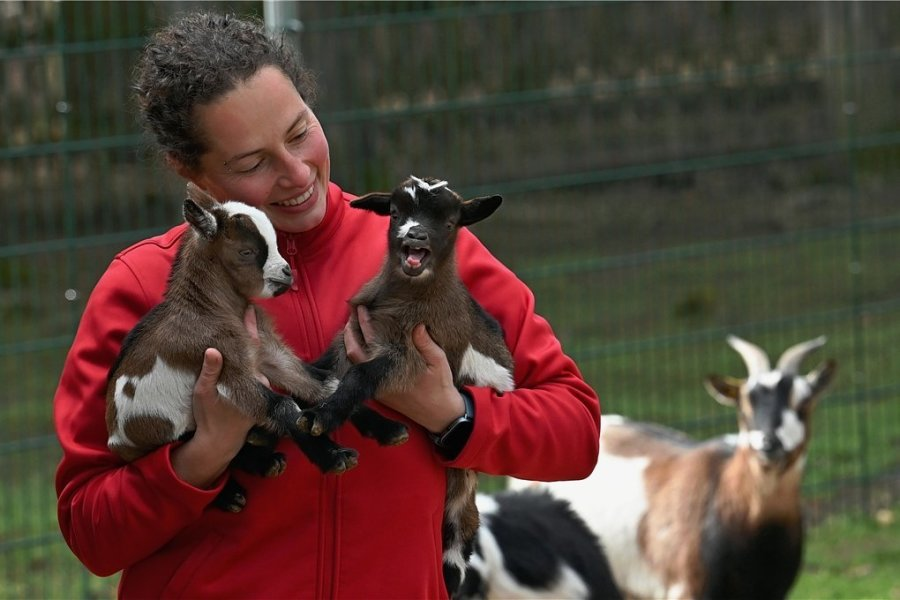 Im Sonnenlandpark Lichtenau hat es im April Nachwuchs gegeben. Mitarbeiterin Sandra Paulus kümmert sich um die Jungtiere.