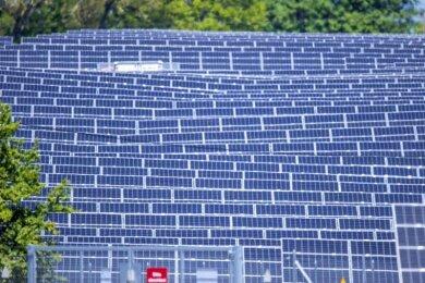 Ökostrom aus Wind, Sonne und anderen erneuerbaren Energiequellen hat im ersten Halbjahr nach Branchenangaben 43 Prozent des Bruttostromverbrauchs in Deutschland gedeckt - und damit weniger als im Vorjahreszeitraum.