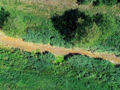 Ausgetrocknet ist das Flussbett der Schwarzen Elster.