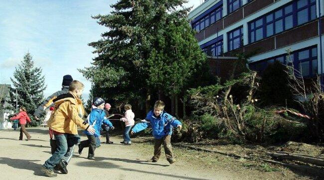 Die alten Wacholderbäume, unter denen die Kinder gern spielten, sind abgeschnitten worden. Die Spielfläche an der Wildenfelser Grundschule soll neu gestaltet werden.