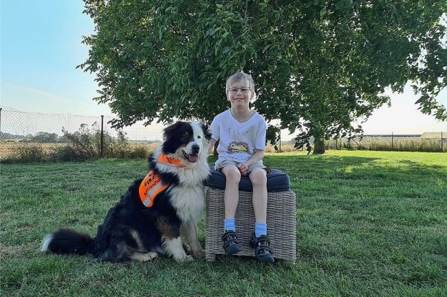 """Felix Weigel ist behindert und soll einen Assistenzhund bekommen. Noch in diesem Jahr wird er ein speziell für ihn ausgebildetes Tier (nicht der Hund auf dem Foto) erhalten - dank """"Leser helfen""""."""