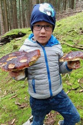 Leon mit seiner Beute, zwei riesigen Steinpilze. Entdeckt hat sie Mutter Marlene Ullmann, doch scheiden durfte sie der Sohn.