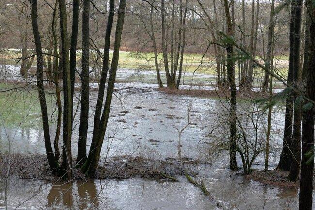 Bei Gelenau ist die Wilisch, ein Nebenfluss der Zschopau, über die Ufer getreten. Auch kleine Bäche, die von den Anhöhen kommend sonst nahezu leer sind, bringen nun viel Wasser ins Tal.