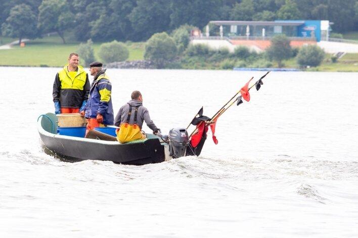 Das Berufsfischer-Trio unterwegs auf der Talsperre Pöhl. Sie fahren von Netz zu Netz und holen altersschwache Silberkarpfen aus der Talsperre Pöhl.