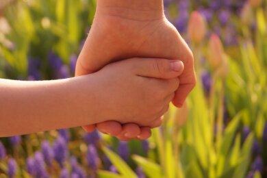 """Nahaufnahme: Eine Kinderhand fasst die Hand eines Erwachsenen, im Hintergrund sorgen Blumen für Farbtupfer. Die Sonne scheint auf die Szenerie. Gerade seine einfache und klare Sprache verleiht Doreen Rudolphs Bild """"Hand in Hand"""" eine besondere Intensität und trifft perfekt das Motto """"Woran mein Herz hängt""""."""