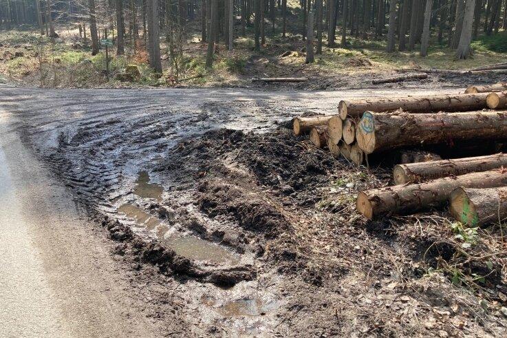 Am Jägerhäuser Flügel zwischen Lauter und Bockau wird Holz geerntet und aus dem Wald abgefahren. Das löst Ärger aus.