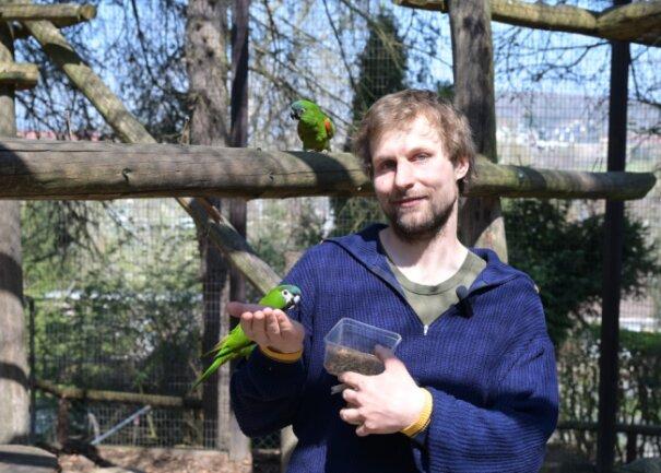 Zootierpfleger Peter Hömke bei den Zwergara, die jetzt zusätzlich täglich Sprech-Unterricht bekommen.