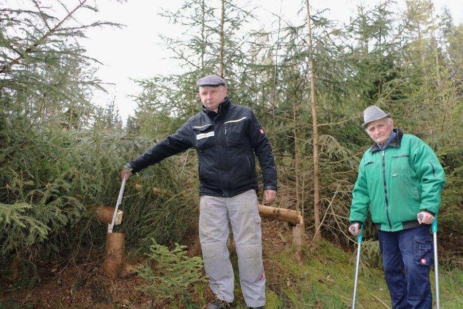 Lutz Bauer (links) und Klaus Bauer zeigen die Fichtenstämme, die nebst Gestrüpp stehen geblieben sind.