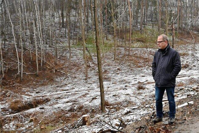 Jan und Ulrike Wehner sowie Michael Fleischer (von links) sind entsetzt: Vom Wald in Garnsdorf, Hölle genannt, sind nur noch Überreste übrig. Aufgrund des Borkenkäferbefalls war eine Abholzung notwendig. Jetzt prüft das zuständige Landratsamt die Rechtmäßigkeit der Arbeiten.