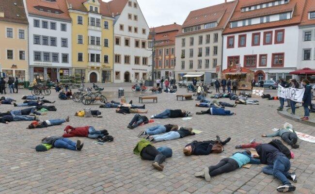 Mit einer Protestaktion auf dem Freiberger Obermarkt haben Menschen am Freitag auf die Klimakrise aufmerksam gemacht.