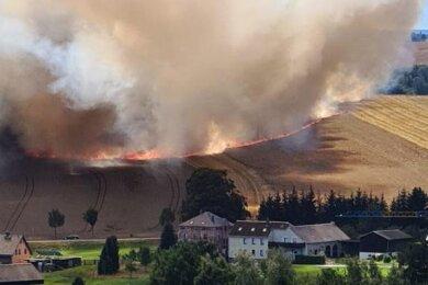 Auf rund 20 Hektar ist auf einem Feld bei Schneeberg Getreide von zwei Landwirtschaftsbetrieben vernichtet worden.