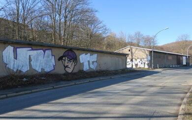 Die mutmaßlichen Sprayer hinterließen ein gut 25 Quadratmeter großes Gaffito an einem Garagenkomplex in Aue.