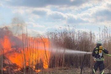 Die Feuerwehr löschte den Feldbrand am Freitagnachmittag in Rossau.