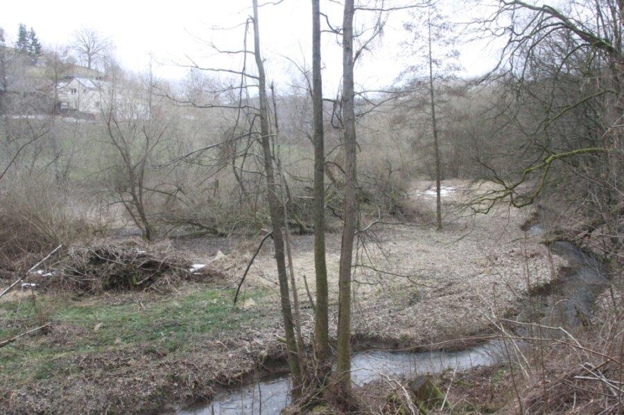 Das Gelände rechts und links vom Tremnitzbach bis hoch zur vorbeiführenden Straße soll renaturiert werden. Es ist mehr als zwei Hektar groß und beherbergte einst einen Teich, mit dessen Wasser in der unterhalb liegenden Seilerei (ehemals Seilerei Hermann - heute Sammt) die Maschinen angetrieben wurden.